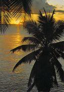 Afrique-SEYCHELLES Sunset On Mahé Coucher De Soleil  (Photo Eden / Peter Erbe 104) *PRIX FIXE - Seychelles