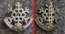 SKI Sports D'hiver - Ancien Insigne 1° Etoile De ESF Ecole Du Ski Français (fabricant Non Connu) - Sports D'hiver