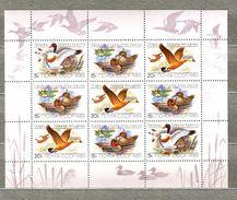 RUSSIA USSR 1989 Birds Ducks Miniature Sheet Michel 5965-67 #6178 - Canards