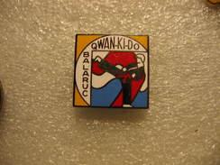 Pin's Du Club De Qwan-Ki-Do De La Commune De BALARUC - Wrestling