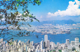 HONG KONG - COLOUR PICTURE POST CARD - COMMERCIALLY SENT TO INDIA, 1981 - ON A CLEAR DAY .... IN HONG KONG - China (Hong Kong)