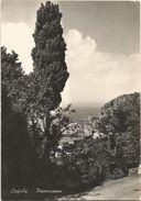 Z4087 Cefalù (Palermo) - Panorama / Viaggiata 1955 - Italie