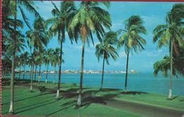Panama City As Seen From Amador - Panama