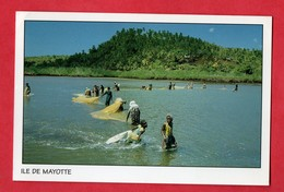 Mayotte Peche Au Djarifa Baie De Chicori - Mayotte