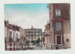 GENZANO D LUCANIA (POTENZA) - VIA DE MARINIS - VIAGGIATA 1968 - ITALY POSTCARD - Potenza