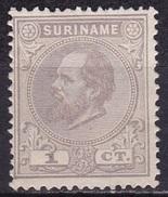 SURINAME 1873 Koning Willem III 1 Cent Lilagrijs Tanding 13½ X 13¼ NVPH 1 E (*) - Suriname ... - 1975
