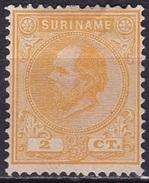 SURINAME 1873 Koning Willem III 2 Cent Geel Tanding 13½ X 13 ¼ NVPH 2 E (*) - Suriname ... - 1975