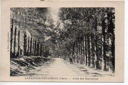 La Bastide Rouairoux : Allée Des Sapinettes - France