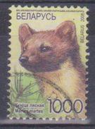 2008 Bielorussia - Animali Selvatici - Bielorussia