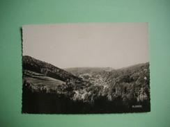 PLOMBIERES LES BAINS  -  88  -  Depuis Dandirand  -  VOSGES - Plombieres Les Bains