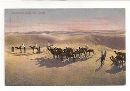 CARTE POSTALE / CARAVANE DANS LES DUNES / 1911 - Tunesien