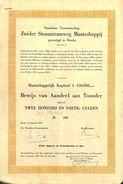 Zuider Stoomtramweg Maatschappij, Breda 1952 - Chemin De Fer & Tramway