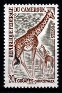 Cameroon, Giraffe, 20f, 1962, MH VF - Cameroon (1960-...)