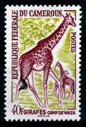 Cameroon, Giraffe, 40f, 1962, MH VF - Cameroon (1960-...)