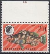 Ascension 1968 Yvertn° 126  *** MNH  Cote 4,50 Euro Faune Poissons Vissen Fish - Ascension (Ile De L')