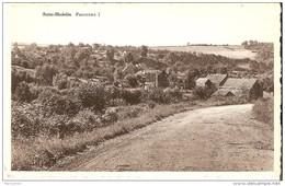 OLNE (4877) : Saint-Hadelin. Panorama 1. CPSM. - Olne