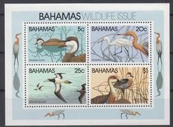 Bahamas  1981 Yvertn° Bloc 34  *** MNH  Cote 14,00 Euro Faune Oiseaux Vogels Birds - Bahamas (1973-...)
