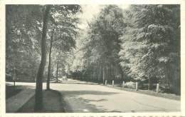 UCCLE - Drève St-Hubert - Ukkel - Uccle