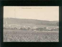 51 Villiers Marmery Vue D'ensemble Sud  édit. Delamalmaison N° 3 - France