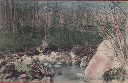 Nonceveux La Noire Heed Remouchamps (En Très Bon Etat)  Carte Colorisée Ingekleurd Photochromie - Fotochromie - Aywaille