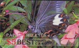 BUTTERFLIES VERY INTERESTING   -1 Card - Papillons