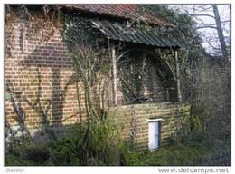 GOOIK (Vlaams-Brabant) - Molen/moulin - Prentkaart Van De Botermolen (hondenmolen) In De Woestijnstraat - Gooik