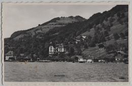 Gunten - Generalansicht Vom See Aus - Photo: Perrochet No. 11599 - BE Berne
