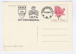 1974 POLAND Cover  MINING, TARNOBRZEG Anniv EVENT Pmk Postal Stationery Card Rose Flower Flowers Stamps Minerals - Minerals