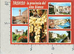 CARTOLINA VG ITALIA - TREVISO - La Provincia Del Vino Bianco - 10 X 15 - ANN. 1990 - Treviso