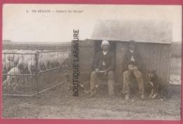 28 - EN BEAUCE----Cabane De Berger--animé - Allevamenti