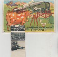 Moselle HAYANGE Ils Emportent Tous Des Vues De Hayange (Carte à Système) - Hayange