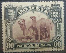 PORTUGAL NYASSA 1901 MH CAMEL - Nyassa