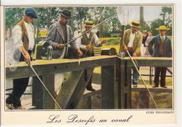 31  - Les Pescofis Au Canal - Série Type Toulousain  N° 13 - Toulouse