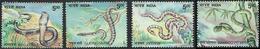 Indian Snakes Complete Set King Cobra Pit Viper Python Gliding Wild Animal Wildlife Reptiles Natter Schlange Serpent - Snakes