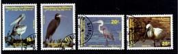 Birds République De Djibouti. 1991 - Djibouti (1977-...)