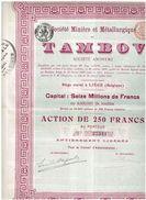 Action Ancienne - Sté Minière Et Métallurgique Du Tambov - Titre De 1899 - Mines