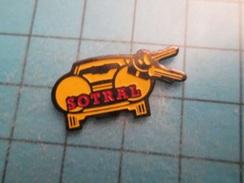 Sp15 Pin's Pins : Rare Et Belle Qualité  SOTRAL VOITURE CLES PHARES   Marquage Au Dos : - --- - - Pin