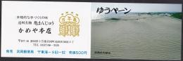 Japan Booklet Cover (No Postage Stamp Inside), Sand Dune Turtle (jbk801) - Japan
