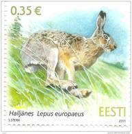 Estonia 2011 MNH Stamp European Brown Hare ,Rabbit - Estland
