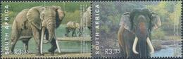 Zuid-Afrika  Olifanten - Olifanten
