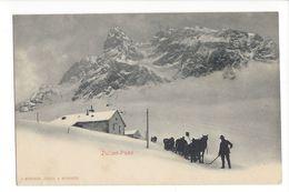 17425 -  Julier-Pass Attelage - GR Grisons