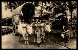RPPC  Bullock Cart  & Driver Sri Lanka (Ceylon)  Ref 2676 - Sri Lanka (Ceylon)