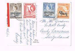EAST AFRICAN GAME - Black Rhinoceros       UGANDA - KENYA - TANGANYIKA - 4x Stamp - Kenya