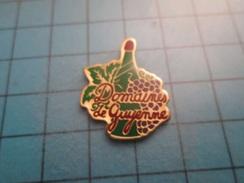 PIN1615c Pin's Pins / Rare , Grand Pin's  VIN BOUTEILLE VIGNE RAISIN DOMAINES DE GUYENNE ,  Belle Qualité ;  Marquage Au - Bière
