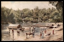 Sri Lanka (Ceylon) River Scene  Ref 2677 - Sri Lanka (Ceylon)