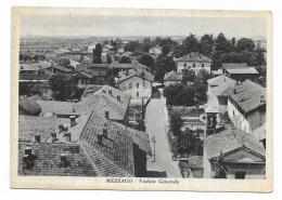 MEZZAGO - VEDUTA GENERALE  - NV FG - Monza