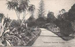 Sydney  - Botanical Garden's  - 2 Scan - Sydney