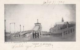 Coney Island New York, Dreamland 'Chutes', C1900s Vintage Postcard - Brooklyn