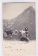 C.P.N. Série A. - 2. Hautes Alpes. Troupeau De Chèvres / Ziegen / Goats - Animaux & Faune