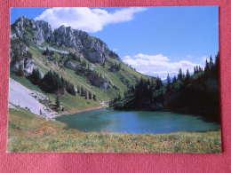 Dep  74 , Cpm  La CHAPELLE D' ABONDANCE , Lac D'ARVOUIN , C25 (349) - La Chapelle-d'Abondance